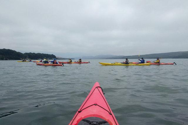 Kayak tour crosses Tomales Bay