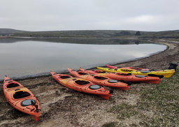 Kayaks lined up on the beach at Drakes Estero