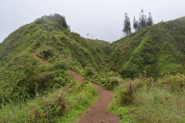Ascending Waihe'e Ridge