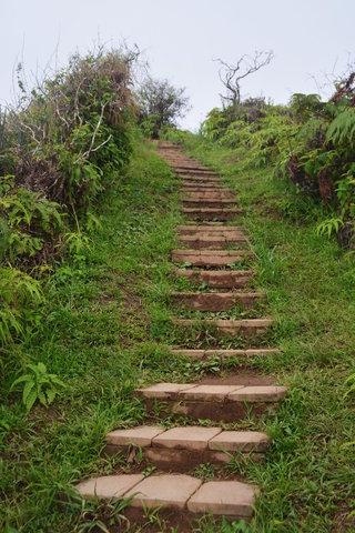 Stairs climbing Waihe'e Ridge