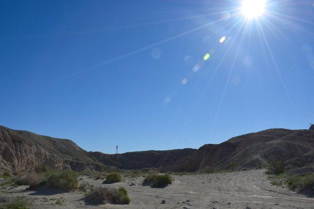 Desert sun above Palm Tree Wash
