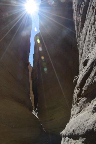 Slot canyon in Palm Tree Wash