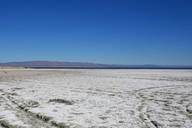 Salt flats on the shore of the Salton Sea