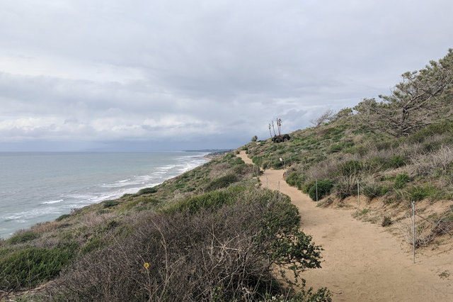 Trail along the bluffs at Torrey Pines State Preserve