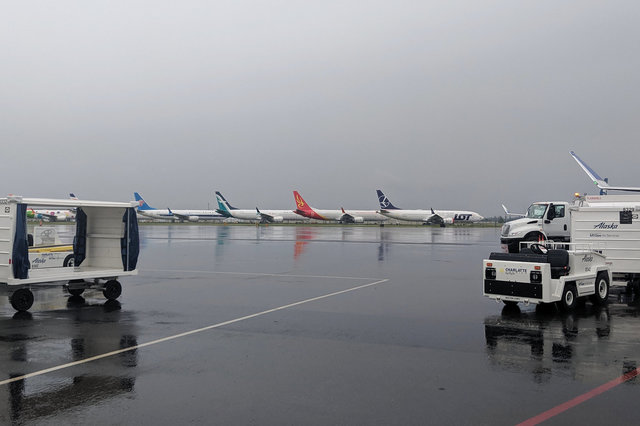 737 Max jets lined up at Paine Field