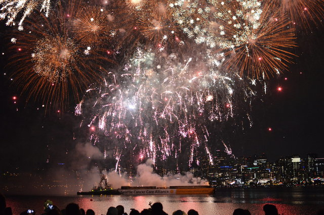 People watch fireworks over Lake Union