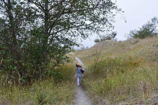 Julian walks through the hummocks