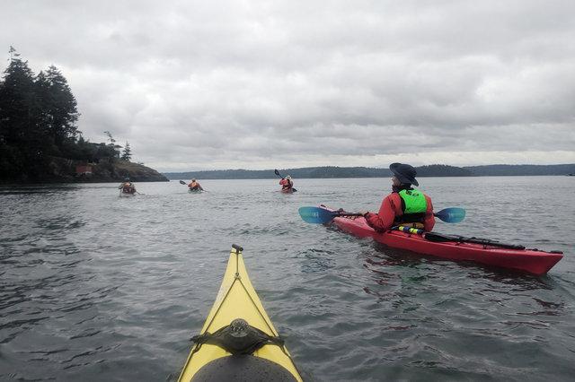 Kayaks paddle towards Yokeko Point
