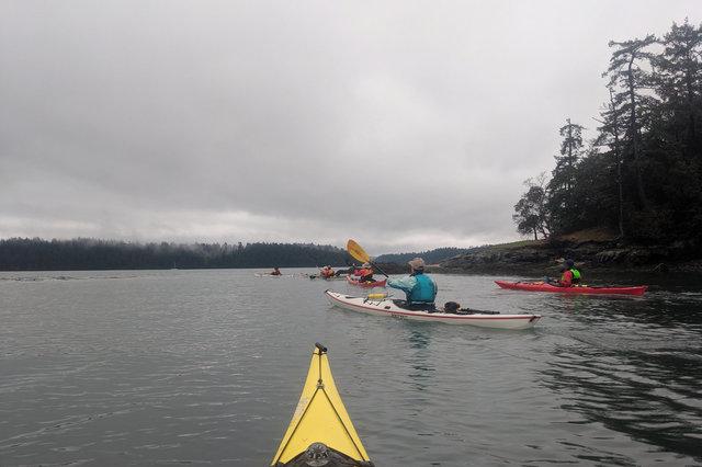 Kayakers paddle around Skagit Island