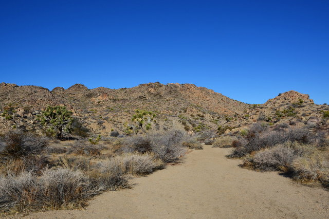 Maze Loop Trail