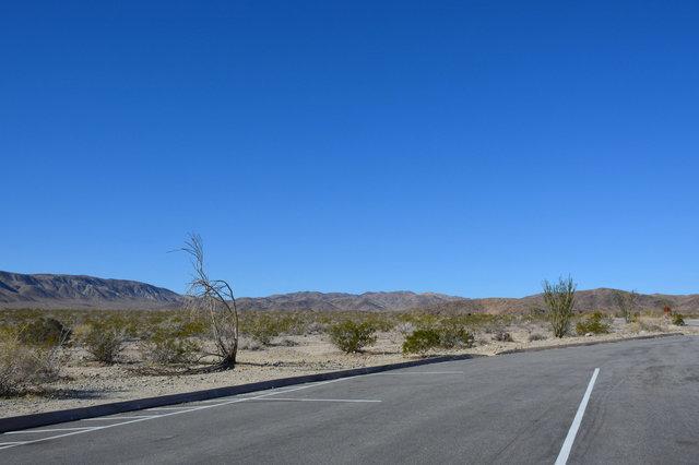 Pinto Basin Road running through Octillo Patch