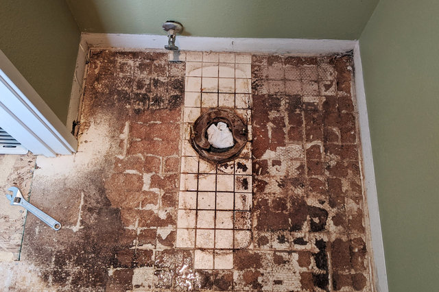 Tile and water-damaged floor under toilet