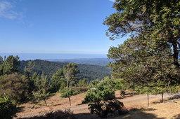 View of Santa Cruz and the Pacific Ocean