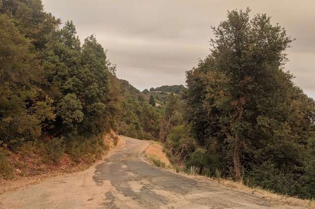 Loma Prieta driveway under wildfire haze