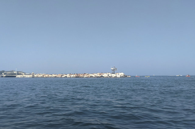 Coast Guard Pier, Monterey Harbor