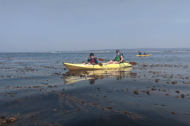 Calvin and Kiesa kayak above a kelp forest