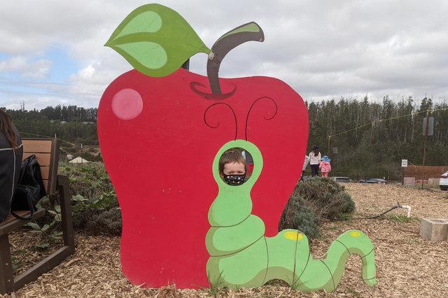 Julian's face in a worm in an apple