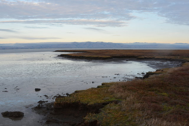 Sand Point and San Francisco Bay at low tide