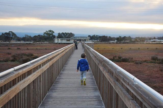 Julian walks back to the nature center at Baylands