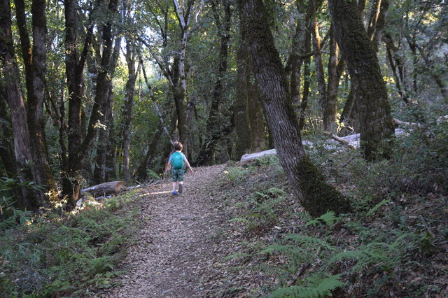 Julian on the San Andreas Fault Trail