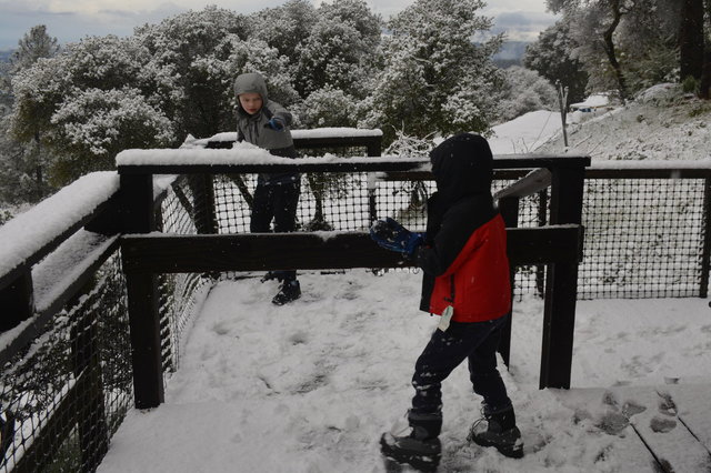 Calvin and Julian play in the snow