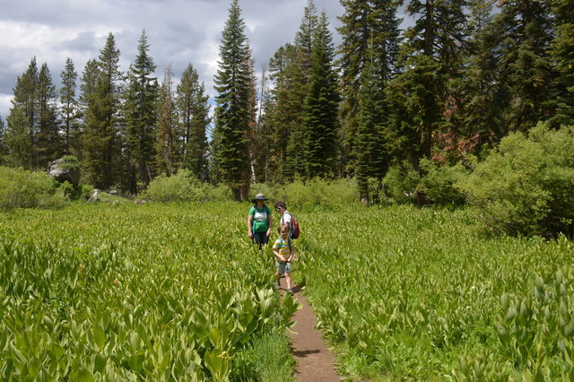 Kiesa, Calvin, and Julian hike through a field