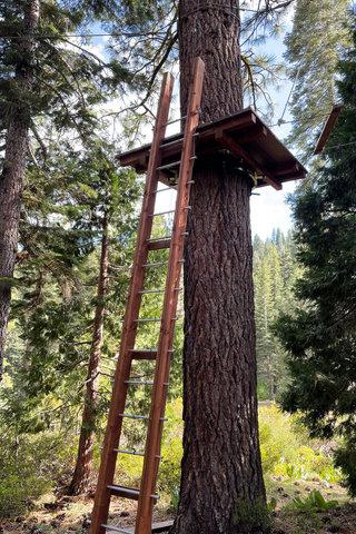 Aerial park escape route