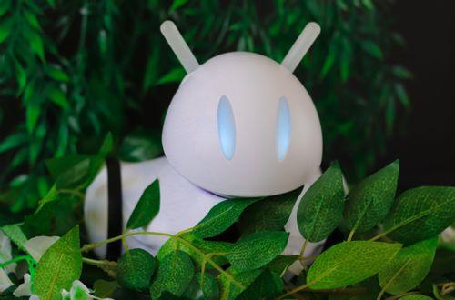 Robot Photon w ogrodzie