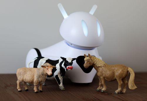 Poznajemy zwierzęta z robotem Photon