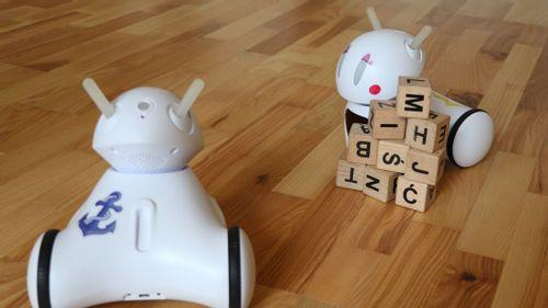 Types of Communication – How Photon Robots talk