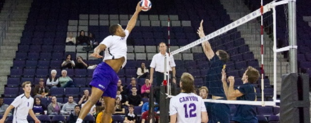 Still-young volleyball program at GCU setting new records