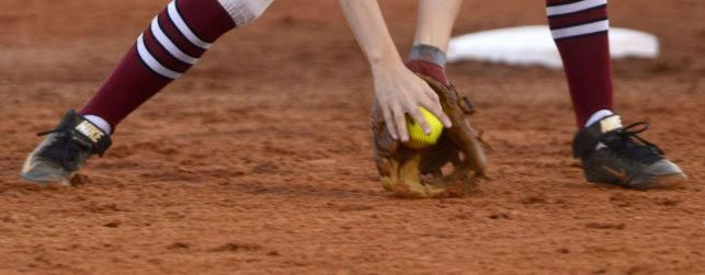 Hamilton, Ironwood Ridge win big-school softball titles