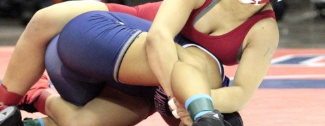 AIA gives green light to add girls' wrestling team titles
