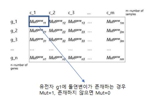 Mutation matrix at a gene level.