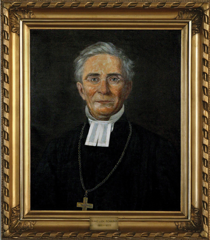 Frans Ludvig Schauman, 1865 – 1877 (B. Reinhold 1871)