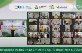Rahmad Pribadi : Petrokimia Gresik Menuju Related Diversified Industry