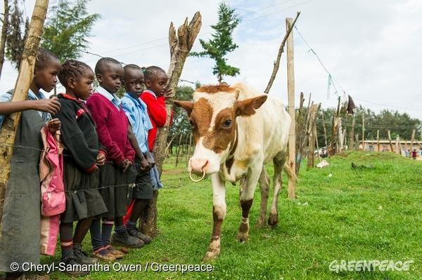 enfants et élevage traditionnel