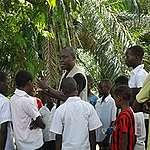 L'exploitation forestière industrielle, ou le risque imminent qui menace le poumon de l'Afrique
