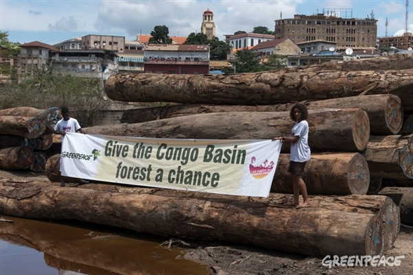 """Banner """"Give the Congo Basin forest a chance"""""""