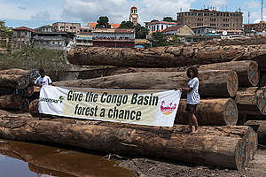 'Give the Congo Basin Forest a Chance' banner in Matadi. © Pierre Gleizes