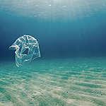 Greenpeace Afrique invite les autorités sénégalaises à mettre en place des mesures concrètes contre le plastique à usage unique