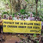 Greenpeace Afrique sur l'accord CAFI–Congo-Brazzaville: «Les activités industrielles doivent être interdites dans les tourbières»