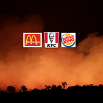 Greenpeace calls on fast food giants to take a stand against Bolsonaro's Amazon destruction