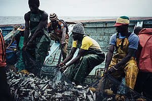 West African small-scale Local Fishermen in Senegal. © Liu Yuyang / Greenpeace