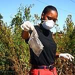 Plastic Cleanup Activity in Johannesburg. © Tawedzerwa  Zhou / Greenpeace