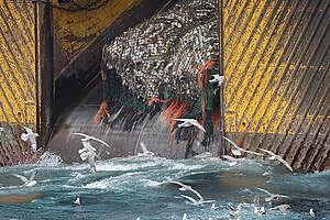Bottom Trawler in the Barents Sea. © Nick Cobbing / Greenpeace
