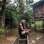 Face à la menace sur les tourbières, les 2 Congo se mobilisent