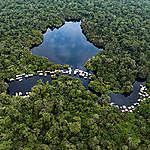 Activistes du climat exclus de la COP25 : Que voulaient dire ces défenseurs des forêts congolaises à Madrid ?