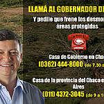 Llamá al gobernador de Chaco para que frene los desmontes