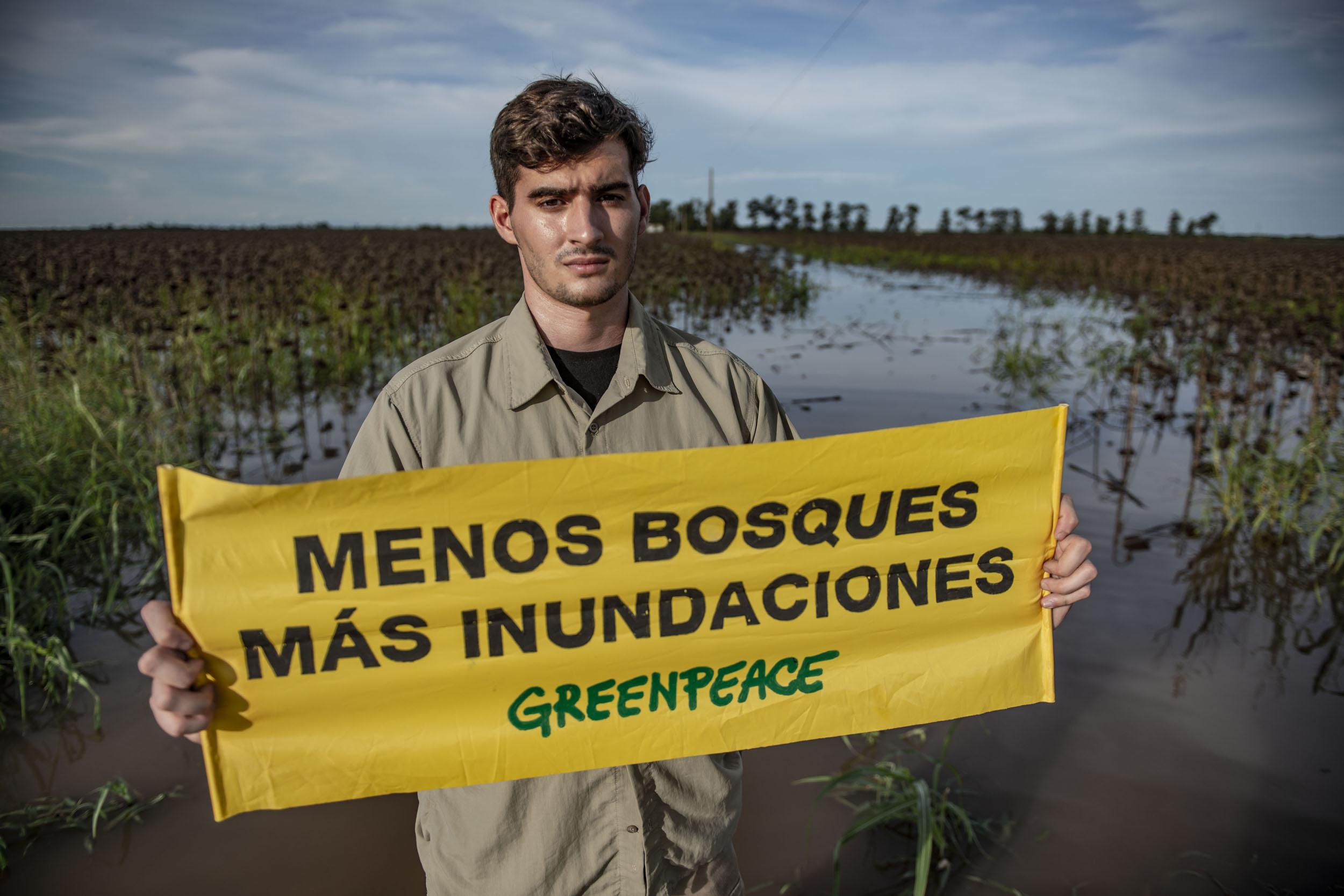Image result for deforestacion argentina 2019